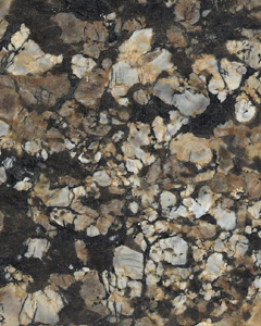 Coral Gold Granite Slabs Exporters