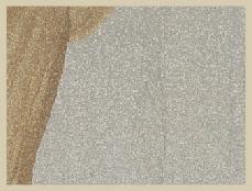 Desert Camel Sandstone